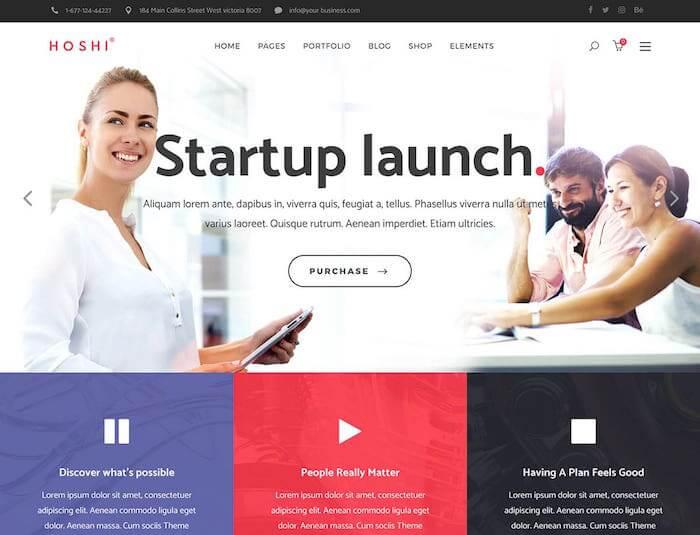 Hoshi-WordPress-Theme-for-Startups