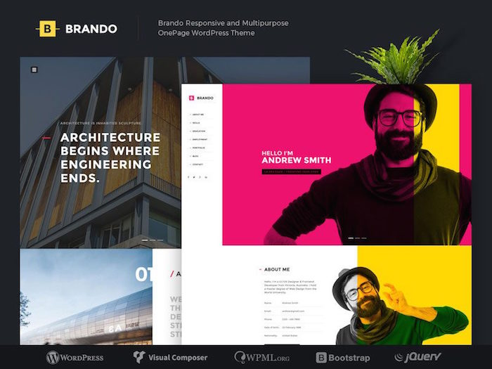 brando-best-minimalist-wordpress-themes