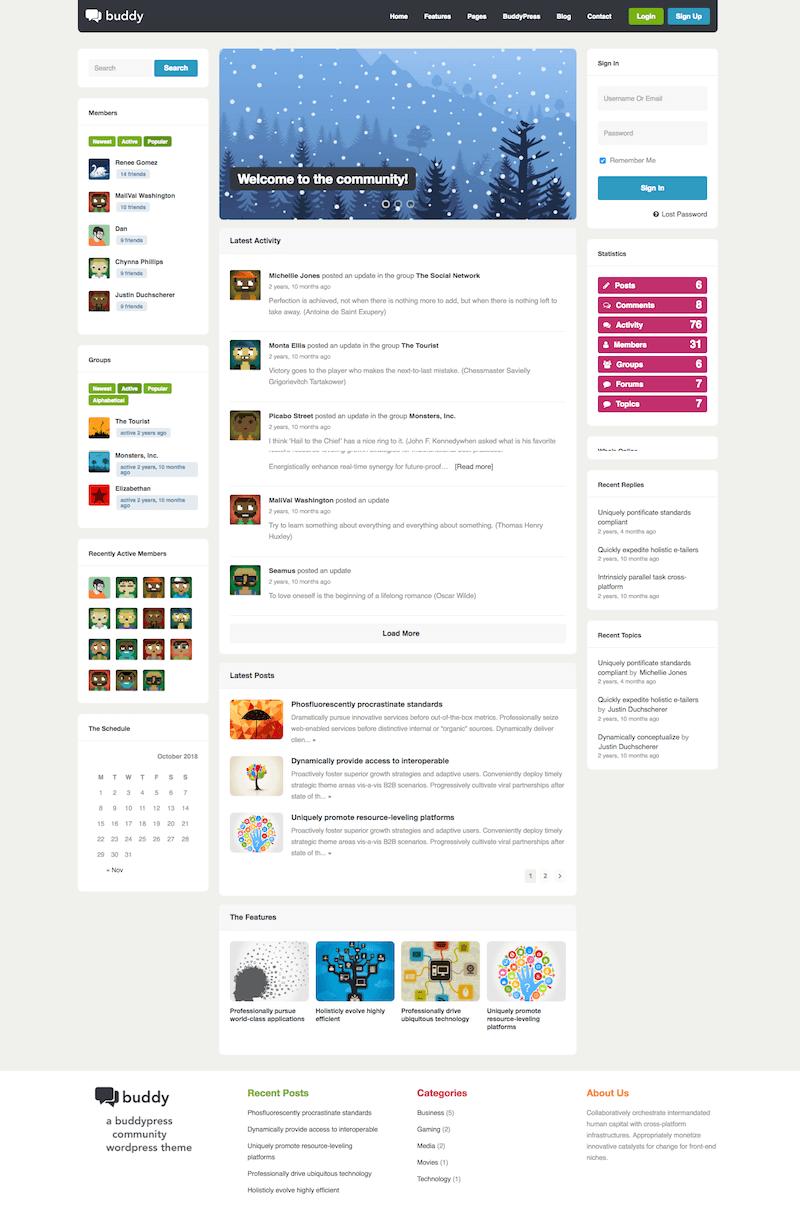 BuddyPress Theme