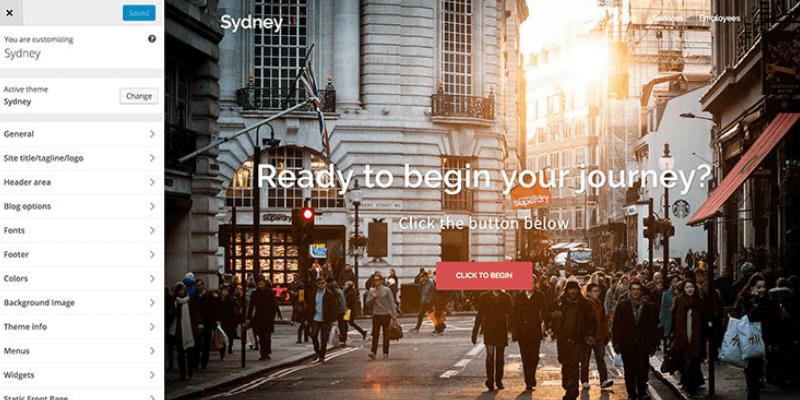 Sydney theme options